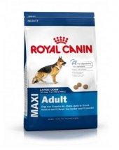 Royal Canin Maxi Adult Büyük Irk Yetişkin Kuru Köpek Maması 15 Kg