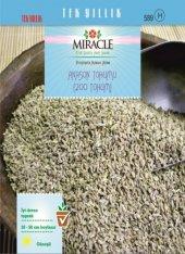 Miracle Anason Tohumu (200 Tohum) 10 Adet