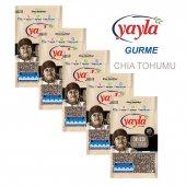 Yayla Gurme Chia Tohumu 500 Gr X 5 Adet