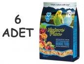 Nature Plan Meyve Aromalı Ve Ballı M.kuşu Yemi 500 Gr X 6 Adet