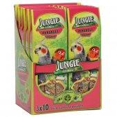 Jungle Paraketler Için Meyveli Kraker 3lü