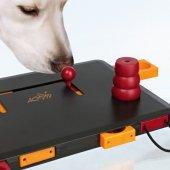 Level 3 Köpek Zeka Eğitim Oyuncağı 34x6� 13 Cm
