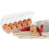 Yumurta Saklama Kabı