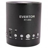 Everton Rt 890bt Usb Sd Fm Sw Bluetooth Radyo Müzik Kutusu