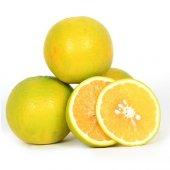 Tatlı Limon (4 Kg)