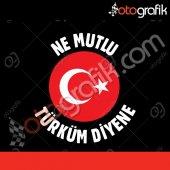 Otografik Ne Mutlu Türküm Diyene Ayyıldız Oto Sticker