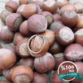 çiğ Kabuklu Fındık (1000 Gr)