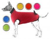 Bobo Polar Köpek Kıyafeti No 2