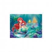 Ariel 50x70 Cm Kanvas Tablo