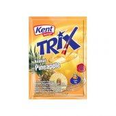 Kent Boringer Trix Ananas İçecek Kolisi
