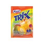 Kent Boringer Trix Mango Kolisi