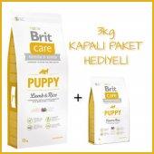 Brit Care Puppy Kuzu Etli Yavru Köpek Maması 12 Kg + 3 Kg Bonus
