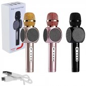 Jameson Js 605 Mikrofon Karaoke Bluetooth Dahili Hoparlör