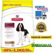 Hills Kuzu Etli Yetişkin Köpek Özel Maması Hediyeli 12+2,5kg Bonu