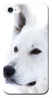 Iphone 6 6s Kılıf Silikon Baskılı Beyaz Kurt Stk 169
