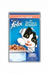 Felix Tavuklu Kedi Maması 100 Gr
