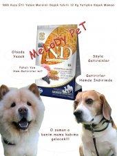 Nd Kuzu Etli,yaban Mersinli Düşük Tahıllı Yetişkin Köpek 12 Kg