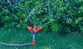 5'li Fıskiye Sprink Çim Sulama Sistemleri Fıskıye Ağaç Sulama Ekipmanları Beşli Fiskiye