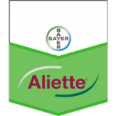 Bayer Aliette Wg 800