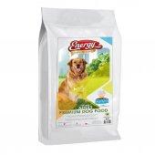 Energy Premium Kuzulu & Pirinçli Köpek Maması 15 Kg