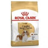 Cavalier King Charles Spaniel Köpek Maması Royal Canin 1.5kg