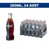 Coca Cola Fuji 250ml X 24