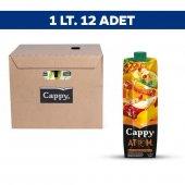 Cappy Atom Meyvesuyu 1 Lt X 12