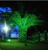 10w 30w 50w Watt Yeşil Bahçe Led Aydınlatma Çim Projektörü+fiş