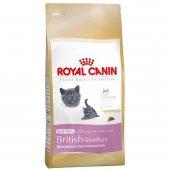 Royal Canin Kitten British Shorthair Yavru Kedi Maması 2 Kg.