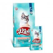 Molly Light & Sterilised Somonlu Yetişkin Kedi Maması 15 Kg
