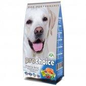 Prochoice Sensitive Skin Balık Etli Köpek Maması 12 Kg