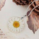 Papatya Fanus Cam Kolye Gerçek Yaşayan Çiçek Ücretsiz Kargo