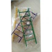 Kuş Oyuncağı Merdiven Rengaren 5,5cm X 19.5 Cm