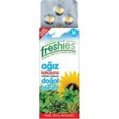 Freshies 12li Ağız Koku Giderici