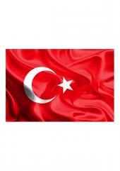 Simisso Türk Bayrağı 924
