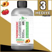 Torq Nutrition Thermogenic L Carnitine 2000 Mg 1000 Ml 33 Servis