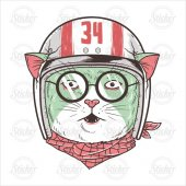 Vespacı Kedi Sticker 17065