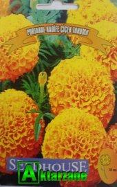 Portakal Kadife Çiçeği Tohumu