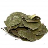 Avakado Yaprağı (Persea Gratissima) 100 Gr.