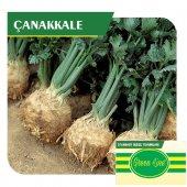 Fide Sepeti Kök Kereviz (Çanakkale) Tohumu 10grlık 1 Paket