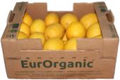 Sertifikalı Organik Limon 7kg Karton