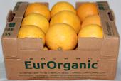Sertifikalı Organik Greyfurt 7kg Karton