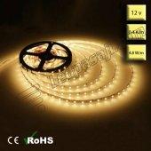 Tek Çipli İç Mekan Silikonsuz Gün Işığı Şerit Led (3528) 5 Metre
