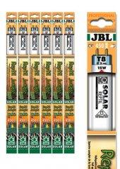 Jbl Solar Reptıl Jungle T8 25w 742 Mm 9000k