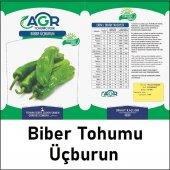 Agrosse Biber Üç Burun Tohumu 10 Gr