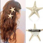 Deniz Yıldızı Toka Gerçek Doğal