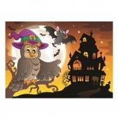 517 Art 2x100 Baykuş Ve Tatı Cadı