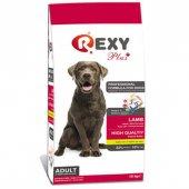 Rexy Plus Adult Lamb Kuzu Etli Yetişkin Köpek Mama...