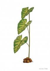 Exo Terra Doğal Bitki Şeklinde Damlatmalı Suluk
