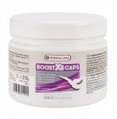 Versele Laga Boost X5caps(Yarış Güvercinleri İçin Güçlendirici)35
